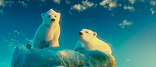 Polar Bears story about being yourself, inspired by an animated polar bear family
